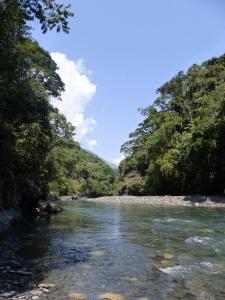 Mit der Machete durch den bolivischen Dschungel