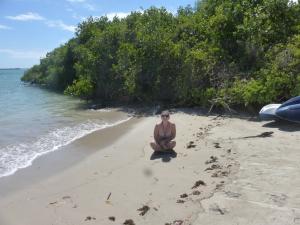 Chillen mit Robbe und Meeresechse
