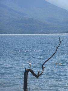 Wunderschöner Lago de Atitlán