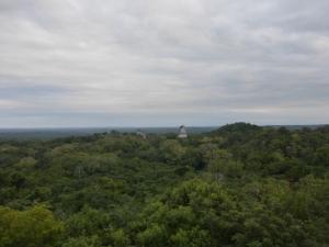 Blick über die Ruinen und den Dschungel
